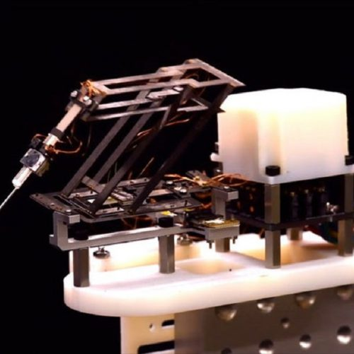 Origami-Inspired Miniature Robot Can Perform Surgical Tasks